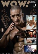WOW ! issue (2 ebooks+3 videos)