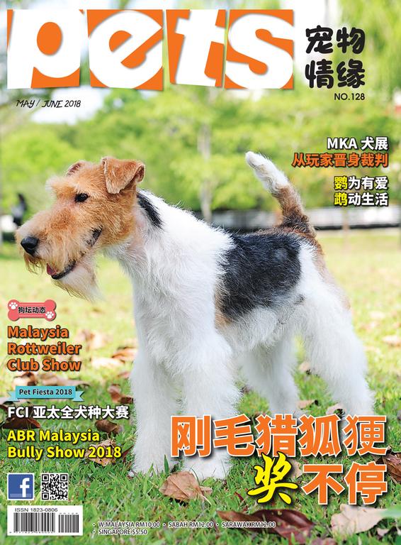 Pets 宠物情缘 May/ June 2018